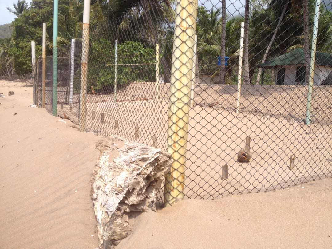 Vivero de tortugas en Querepare, zona protectora, tiene una barrera de madera que impidió que fuese alcanzado por el crudo. Foto: Jeanfreddy Gutiérrez.