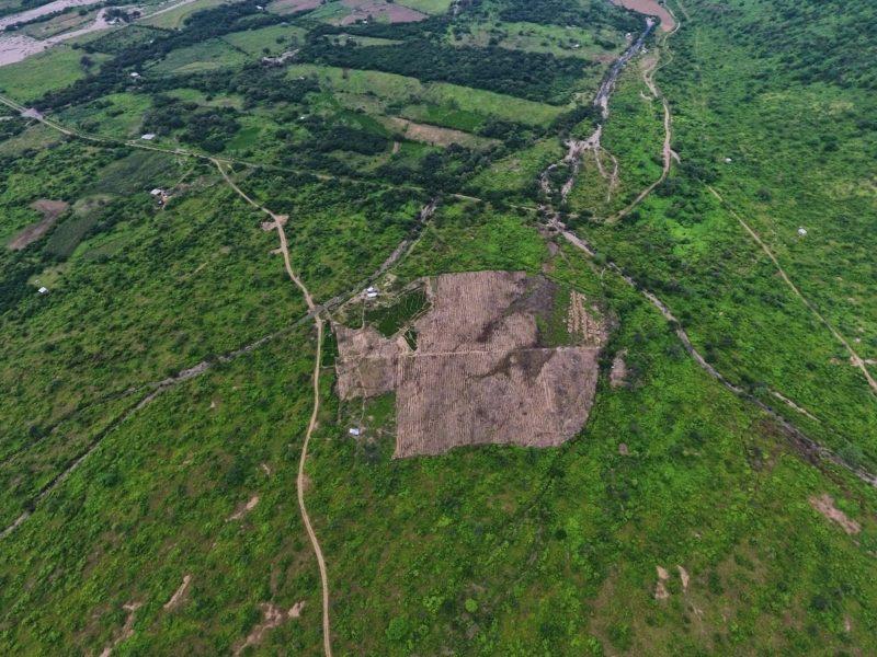 El sector de la pampa Yaipón, zona de amortiguamiento del Área de Conservación Privada Chaparri, presenta espacios deforestados. Foto: Javier Ruíz.