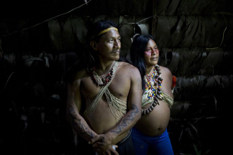 Los pueblos indígenas están expuestos a presiones constantes. Foto: Land is Life.