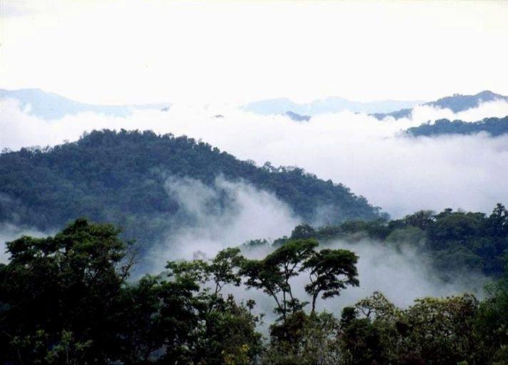 Vista de la reserva de Tariquía. Foto: Servicio Nacional de Áreas Protegidas.