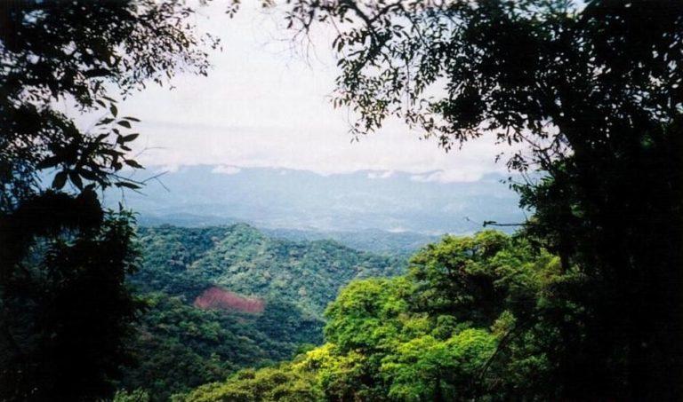 La reserva de Tariquía se caracteriza por su enorme biodiversidad. Foto: Servicio Nacional de Áreas Protegidas.