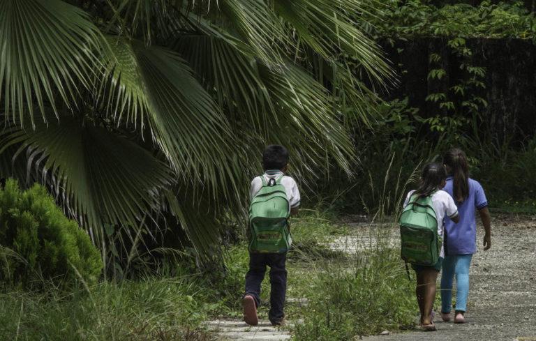 Las poblaciones del ejido Boca Chajul conviven con la palma africana. Foto: Moysés Zúñiga Santiago.