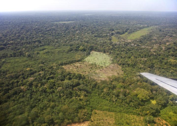 Los efectos de la deforestación en el departamento del Beni. Foto: Chema Formentí.