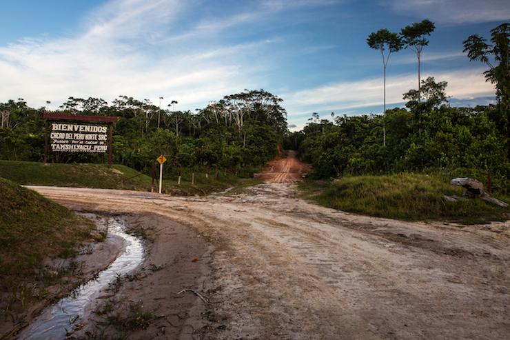 Perú sentencia Dennis Melka Ingreso a las plantaciones de Cacao del Norte en Tamshiyacu. Foto: Diego Pérez.
