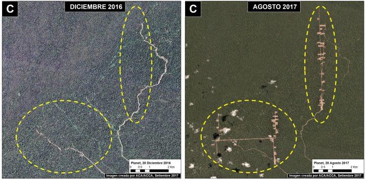 Zona deforestada en la localidad de Orellana, Loreto. Fuente: Maap/Planet.