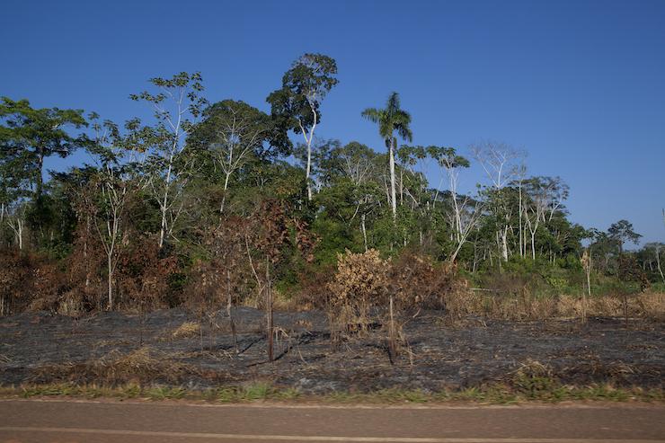 Una de las principales causas de deforestación en Madre de Dios ha sido la construcción de la carretera Interoceánica. Foto: Rochi León.