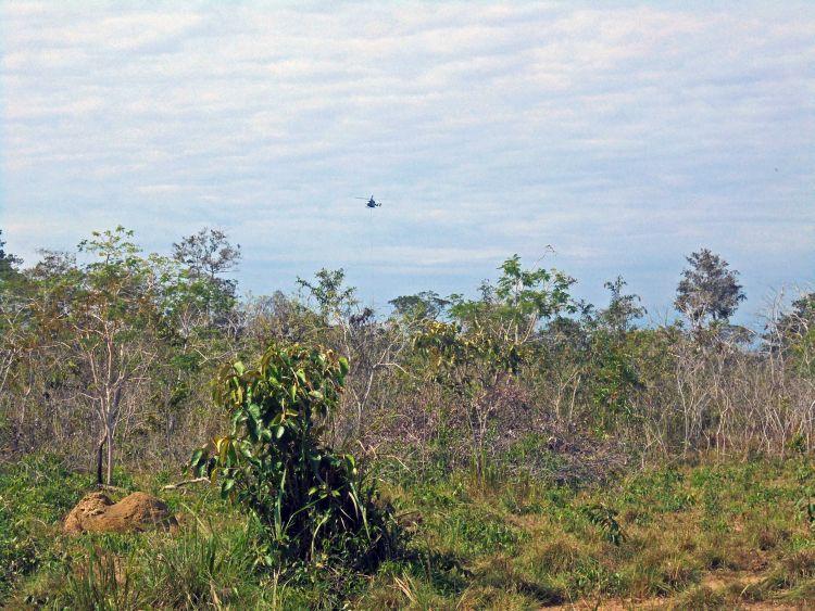 Los comuneros aseguran que el ruido ahuyentó los animales silvestres de sus territorios. Foto: OMINAB