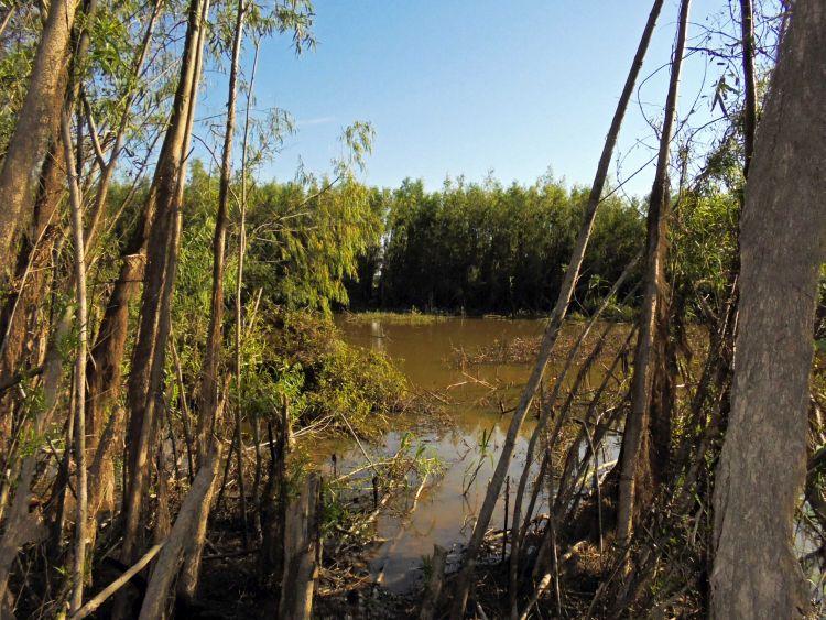 Los indígenas cavineños indican que las actividades sísmicas han ocasionado daños a sus lagos y lagunas . Foto: OMINAB