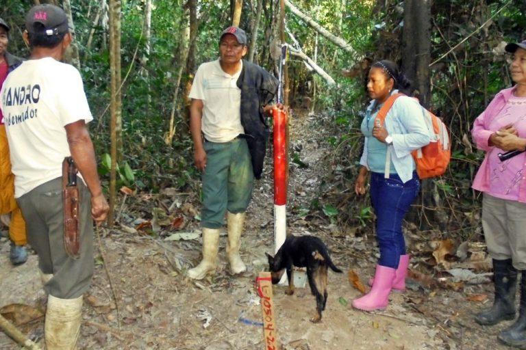 Integrantes del pueblo cavineño inspecciona los senderos y caminos por donde pasó la línea de la prospección sísmica. Foto: OMINAB