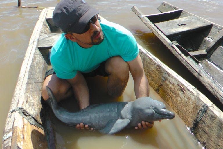 Fernando Trujillo, director de Fundación Omacha de Colombia, estudia desde hace más de veinte años el comportamiento y estado de conservación de los delfines de los ríos sudamericanos. Foto de Kike Calvo.