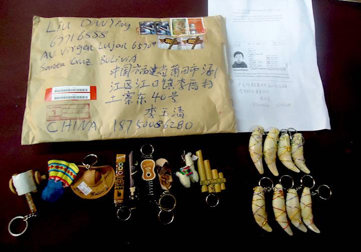 Uno de los métodos mas usados para enviar los colmillos a China es el servicio de correo. Foto: Ecobol.