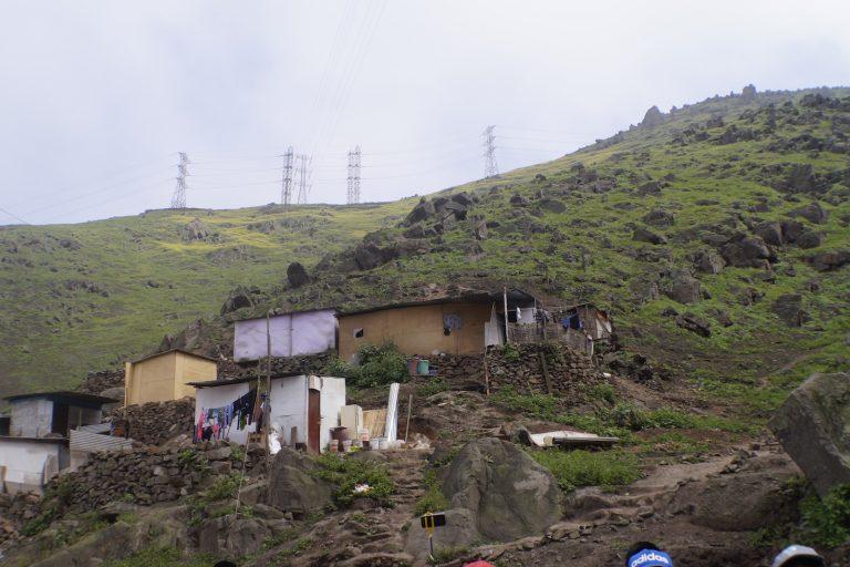 Las invasiones están destruyendo las Lomas de Amancaes. Foto: Carlos Soria