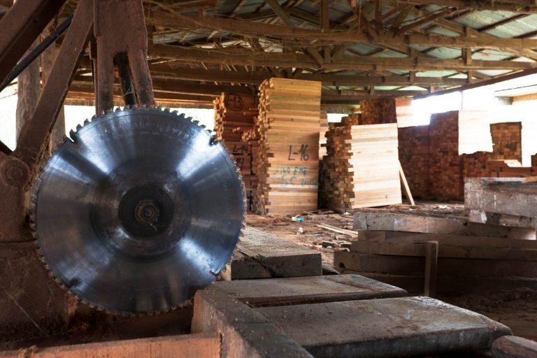 La madera extraída ilegalmente de los bosques peruanos es transportada con documentación falsa. . Foto: Agencia de Investigación Ambiental (EIA).