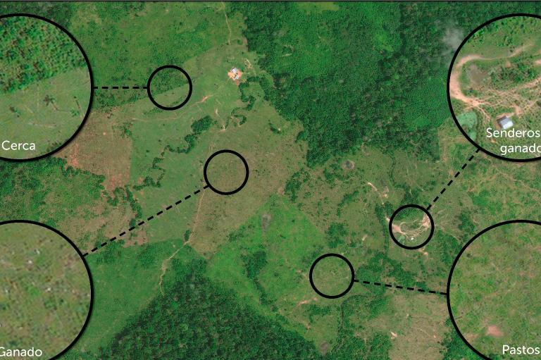 Imágenes satelitales mostraron la deforestación de los últimos 15 años en Colombia. Foto: MAAP.