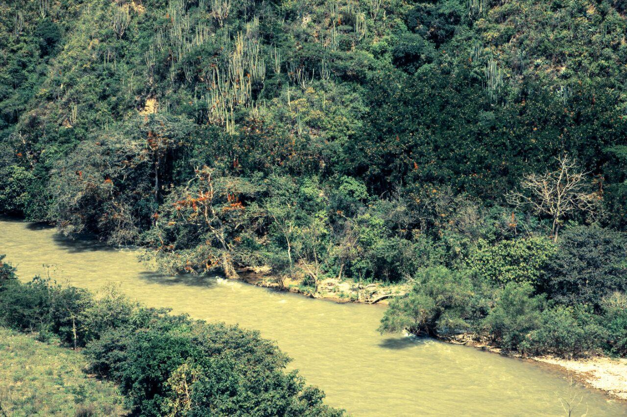 El área de conservación privada está ubicada cerca del río Utcubamba. Foto: Pedro Heredia / Wagner Guzmán.