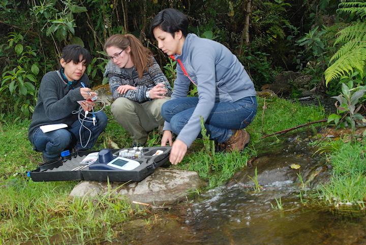 Investigadores toman muestras de la calidad del agua en un arroyo donde una vez se encontró la especie. Foto: Arturo Muñoz.