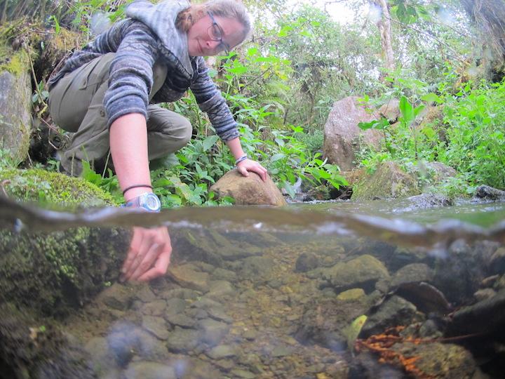 Toma de muestra de agua en un arroyo. Foto: Arturo Muñoz.