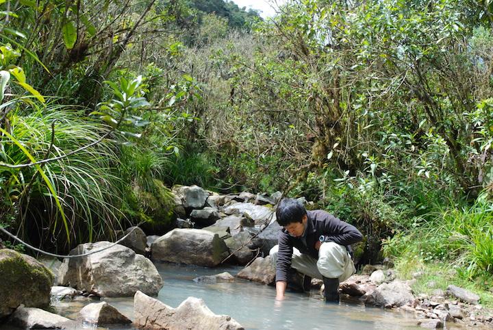 El biólogo Arturo Muñoz durante una búsqueda de la rana de agua Sehuencas. Foto: Arturo Muñoz.