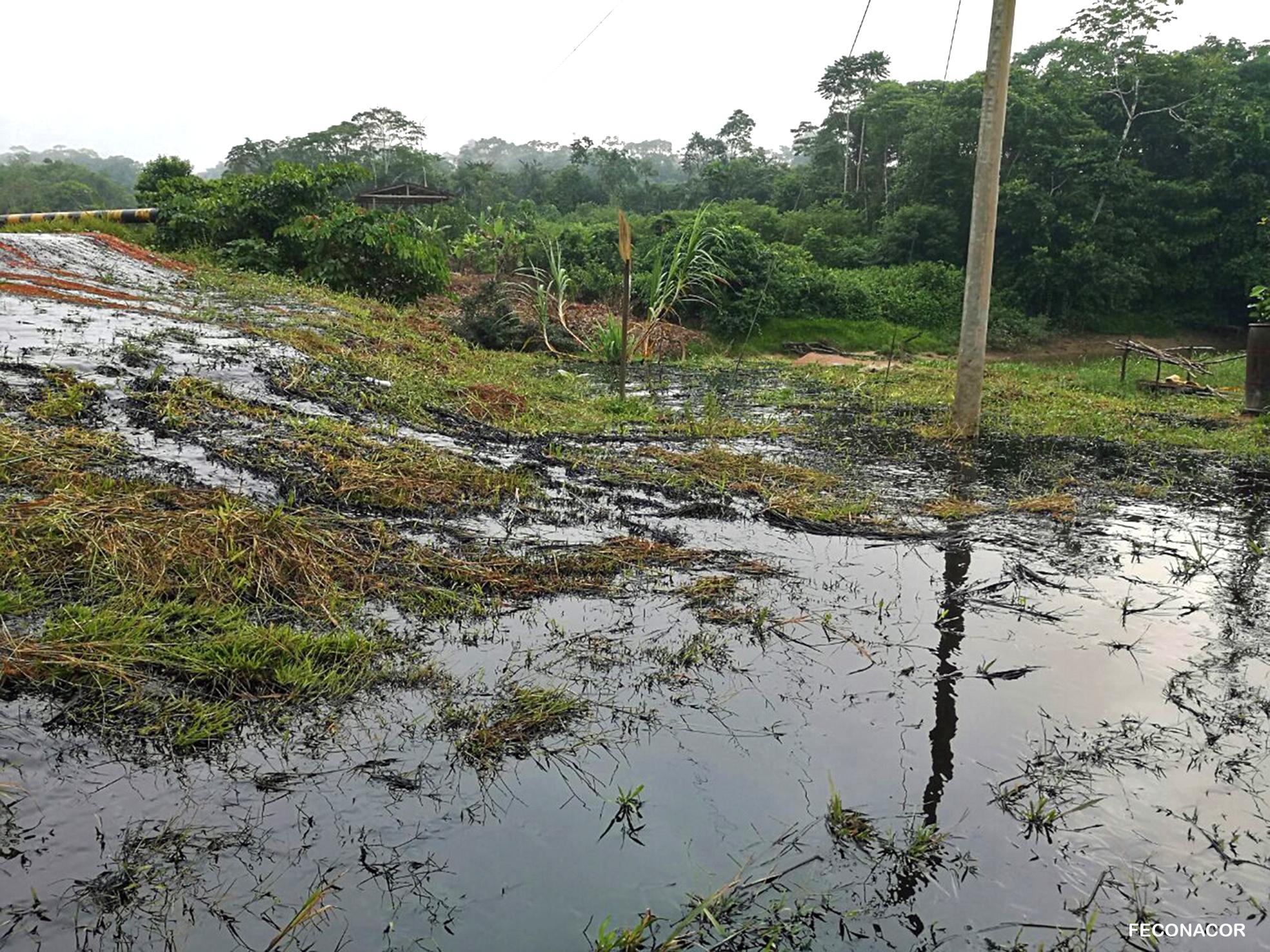 Según los dirigentes indígenas se habrían vertido unos mil barriles de petróleo. Foto: Feconacor