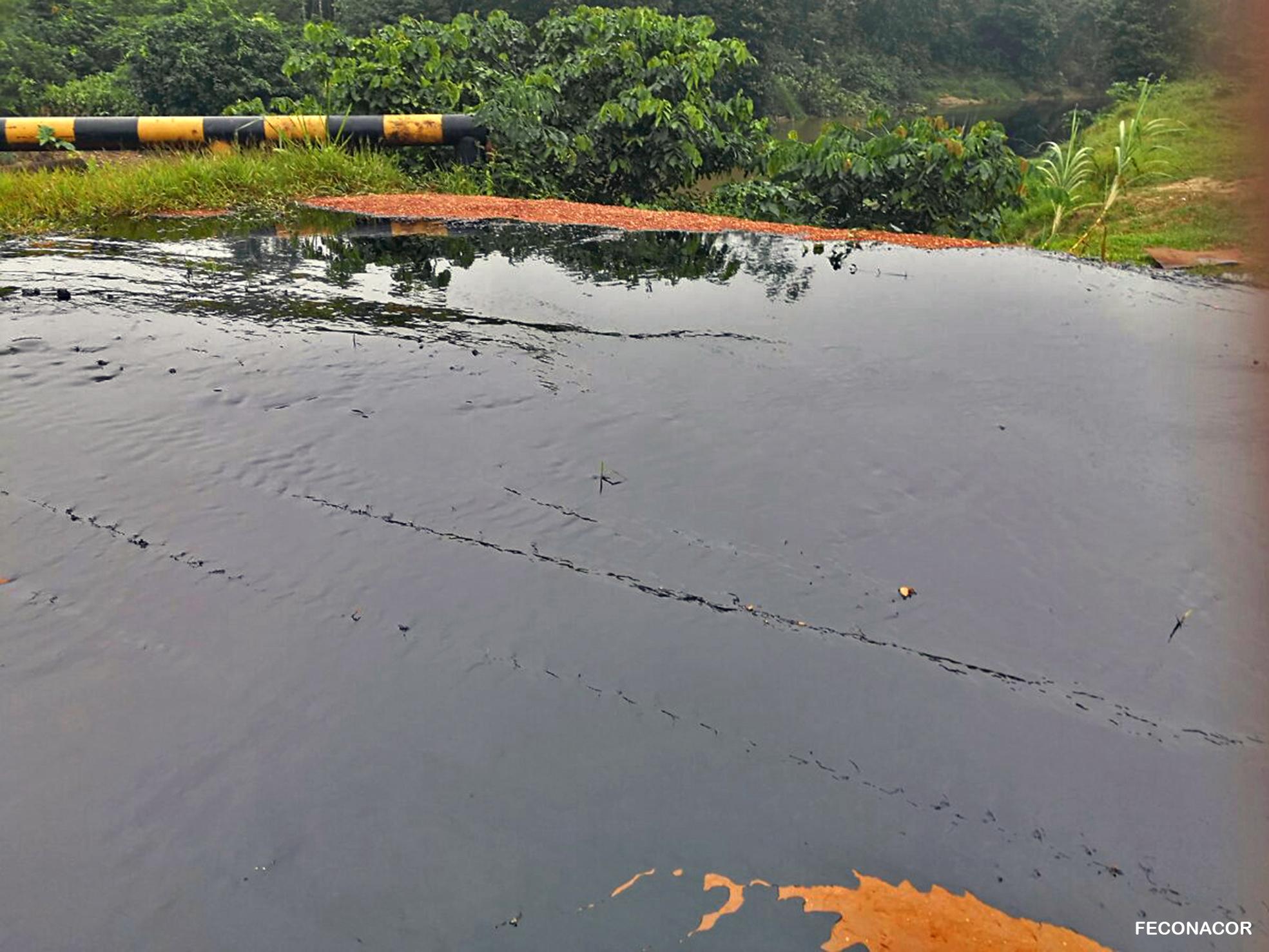 El derrame de petróleo se produjo el domingo 18 de febrero en el Lote 192, operado por la empresa Frontera Energy Corporation. Foto: Feconacor