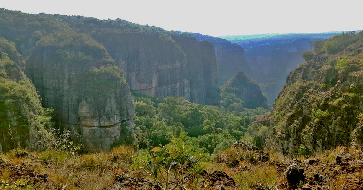 Con la ampliación, el Parque Nacional Natural Chiribiquete tendrá 4.3 millones de hectáreas protegidas. Foto: Esteban Montaño.