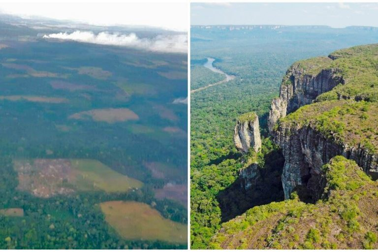 La capital del Guaviare figura entre las alertas tempranas por deforestación emitidas por el IDEAM en el 2017. Foto: Esteban Montaño.