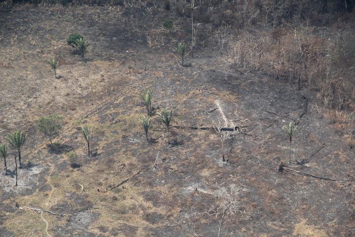 Esta semana se registraron siete incendios activos y decenas de quemas. Foto: Semana. Foto: Jaime Florez.