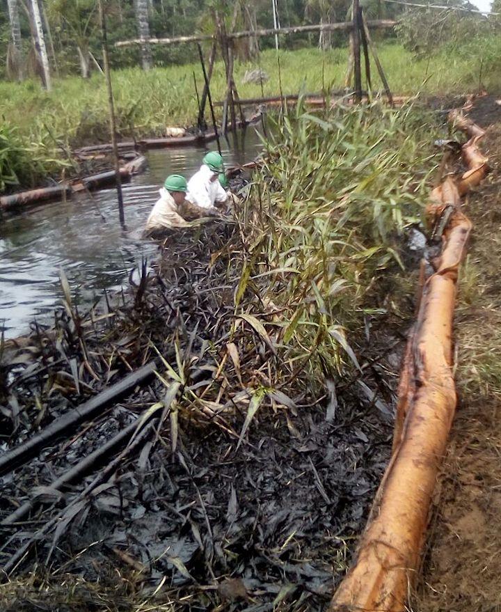 Es el tercer derrame provocado por una fuga en el Oleoducto Nor Peruano que se registra en el poblado de San Pedro, en la región de Loreto. Crédito: Giner Panduro.
