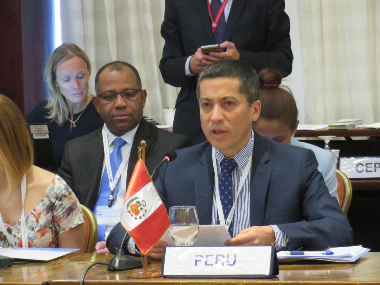El Viceministro de Desarrollo Estratégico de los Recursos Naturales de Perú, Fernando León Morales, participó de las negociaciones de Costa Rica. Foto: DAR