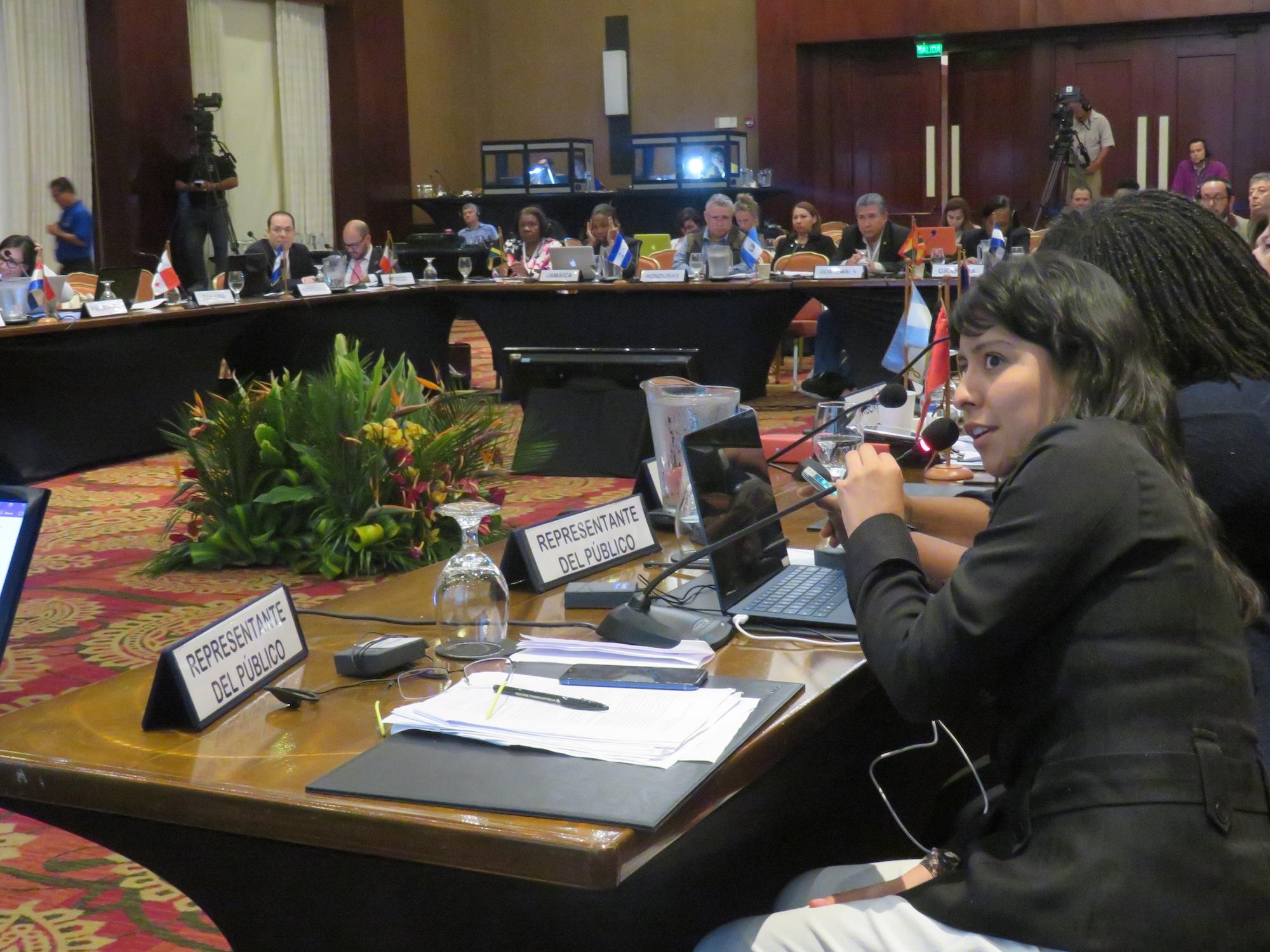 Fueron seis años de negociaciones para arribar al Acuerdo Escazú. Foto: DAR