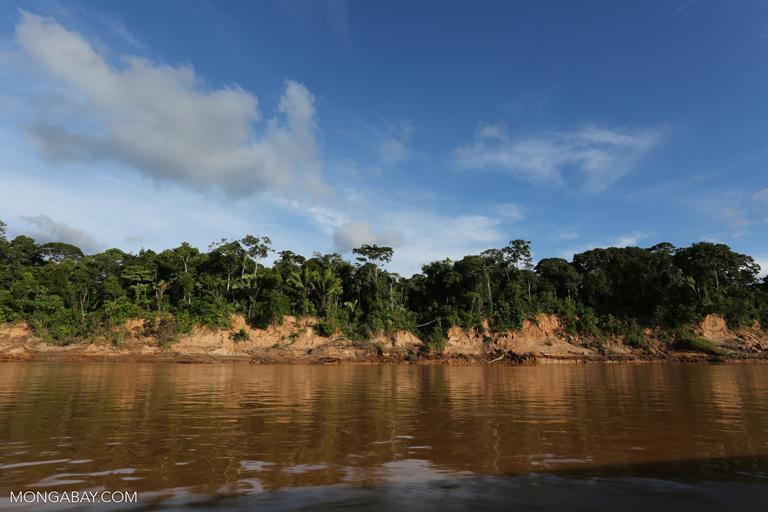 Jessica Pisconte ingresó como guardaparque a la Reserva Nacional Tambopata en el año 2016. Foto: Rhett A. Butler