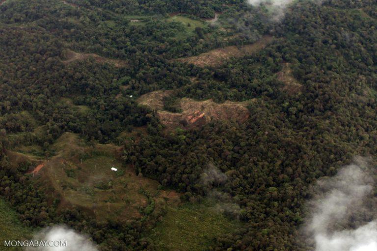 Deforestación en el departamento de Chocó, Colombia. Foto: Rhett A. Butler