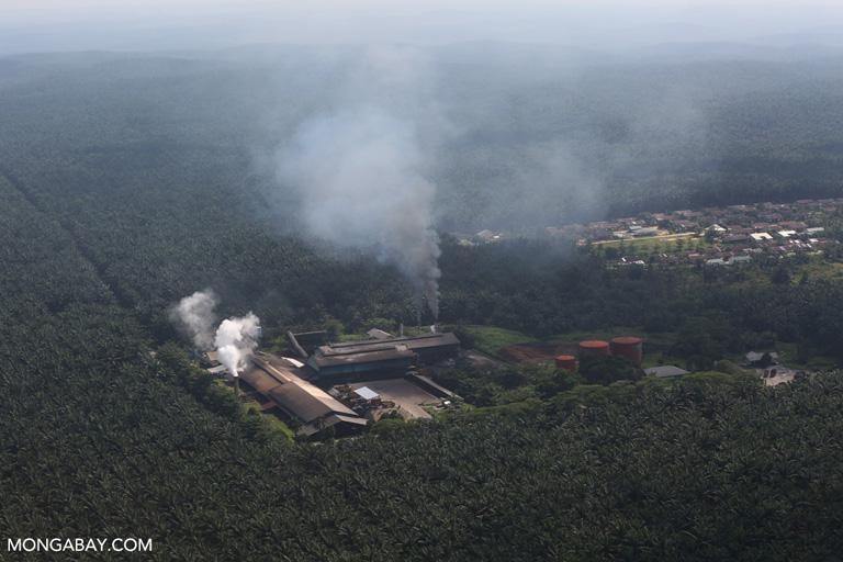 Una planta de aceite de palma en Indonesia. Imagen referencial. Foto: Rhett A. Butler
