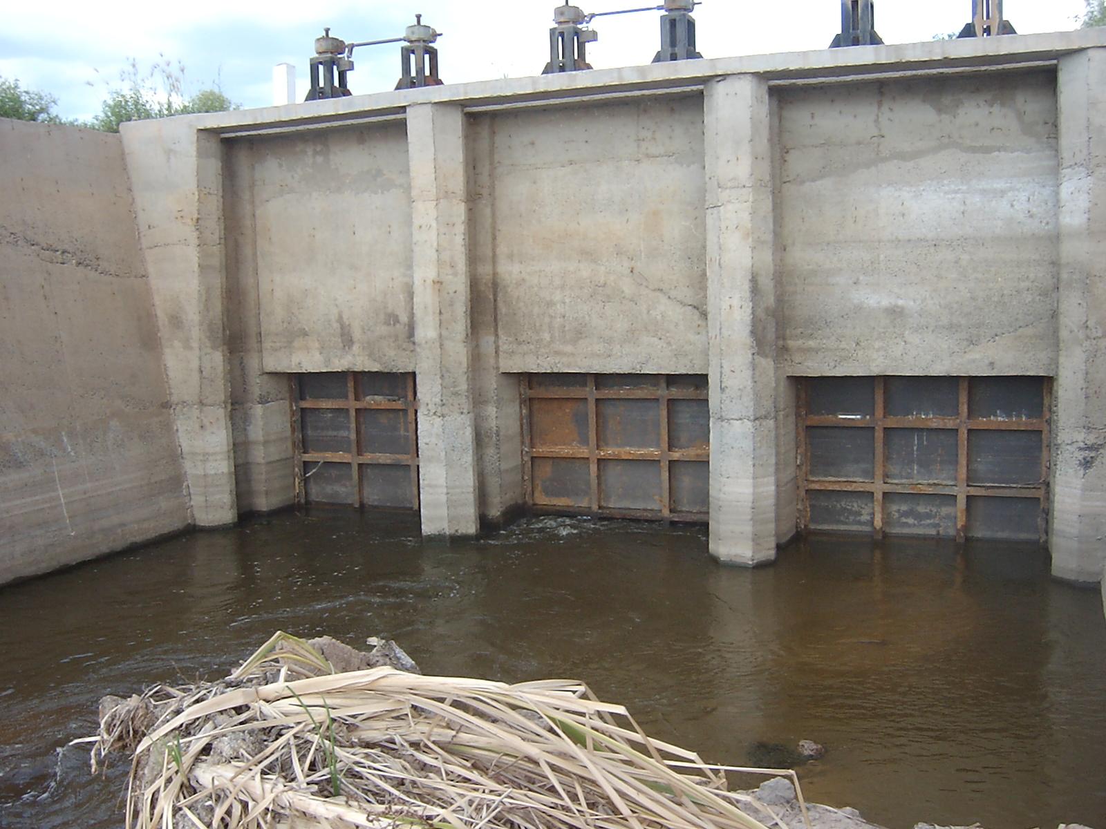 las represas e hidroeléctricas impiden el desplazamiento normal de las especies migratorias, pues alteran sus rutas de desplazamientos. Foto: Soraya Barrera.
