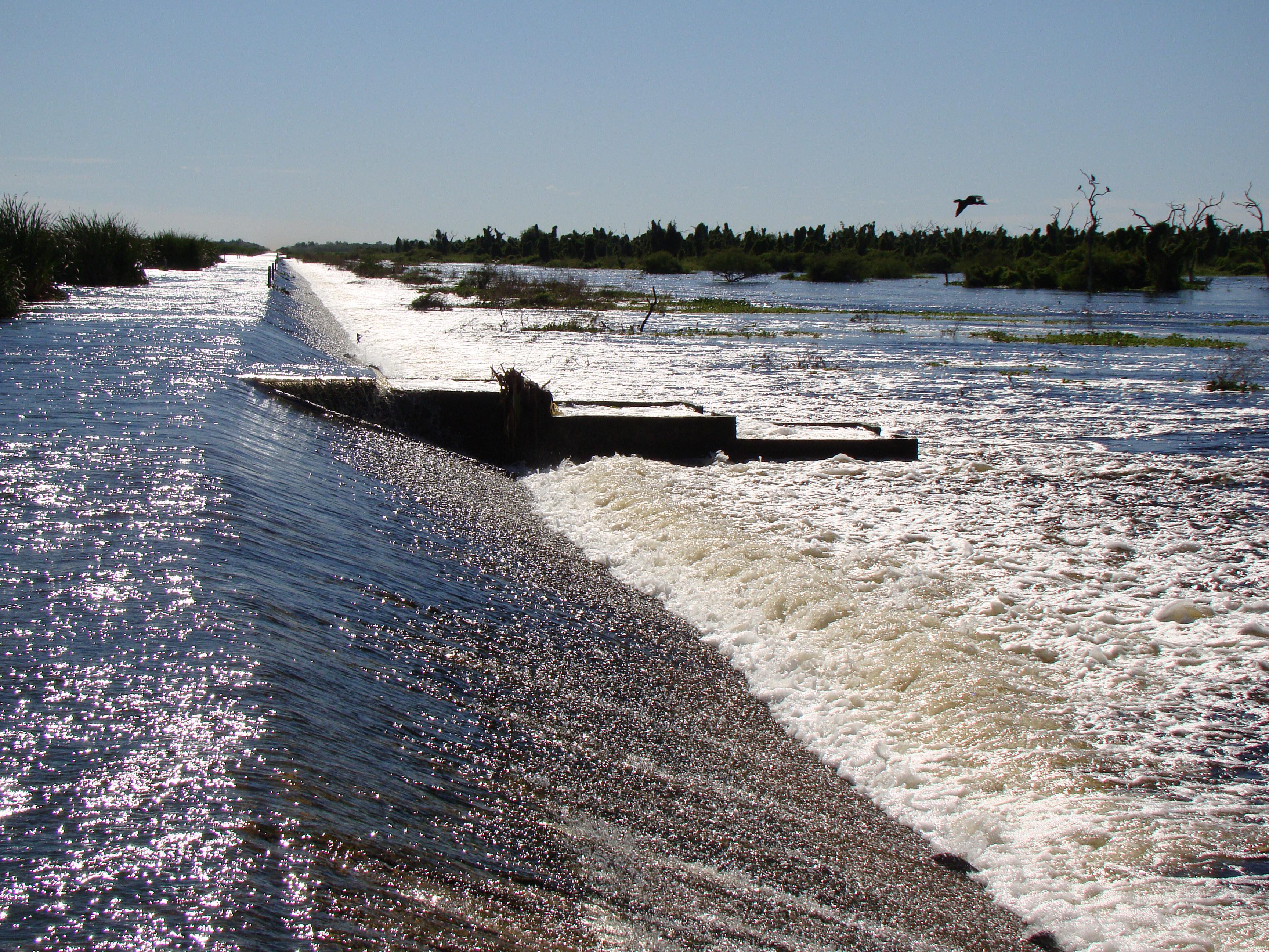 La instalación de un obstáculo en un río modifica su caudal y afecta el ciclo de vida de los peces migratorios. Foto: Soraya Barrera.