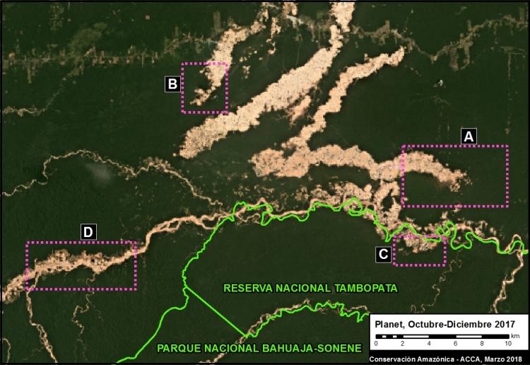 Imágenes de la deforestación en Perú captadas por satélites con sensores ópticos. Foto: MAAP.