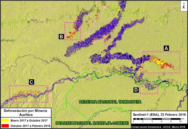 Imágenes de la deforestación en Madre de Dios, Perú, captadas por radares del Sentinel 1. Foto: MAAP.