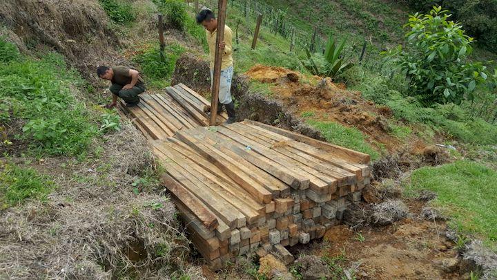 La madera que se trafica ilegalmente en el sur del Huila es destinada a los cultivos y a la produccción de carbón de leña para los asaderos y restaurantes. Foto: CAM.