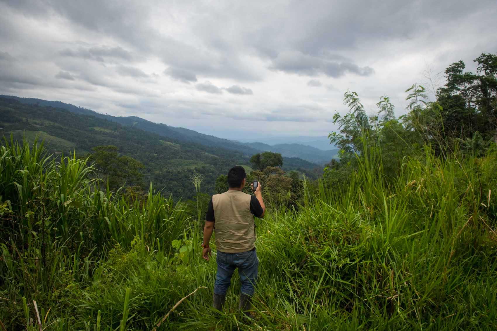 1.La vocación forestal de los bosques sanmartinenses va a estar definida, a partir de la aprobación del expediente técnico, por una herramienta elaborada en un proceso participativo. Foto: Aldo Arozena.