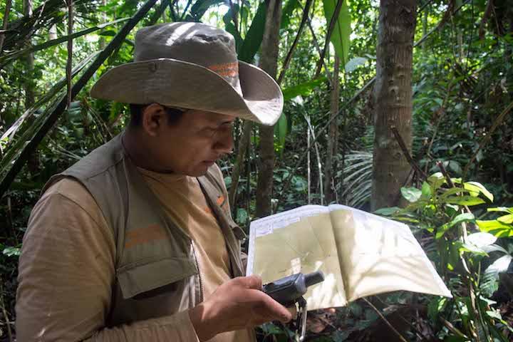 Ing. Ling Fababa, amazónico, líder de la brigada de zonificadores en Las Palmas, distrito de Biabo, provincia de Bellavista. Foto: Aldo Arozena.