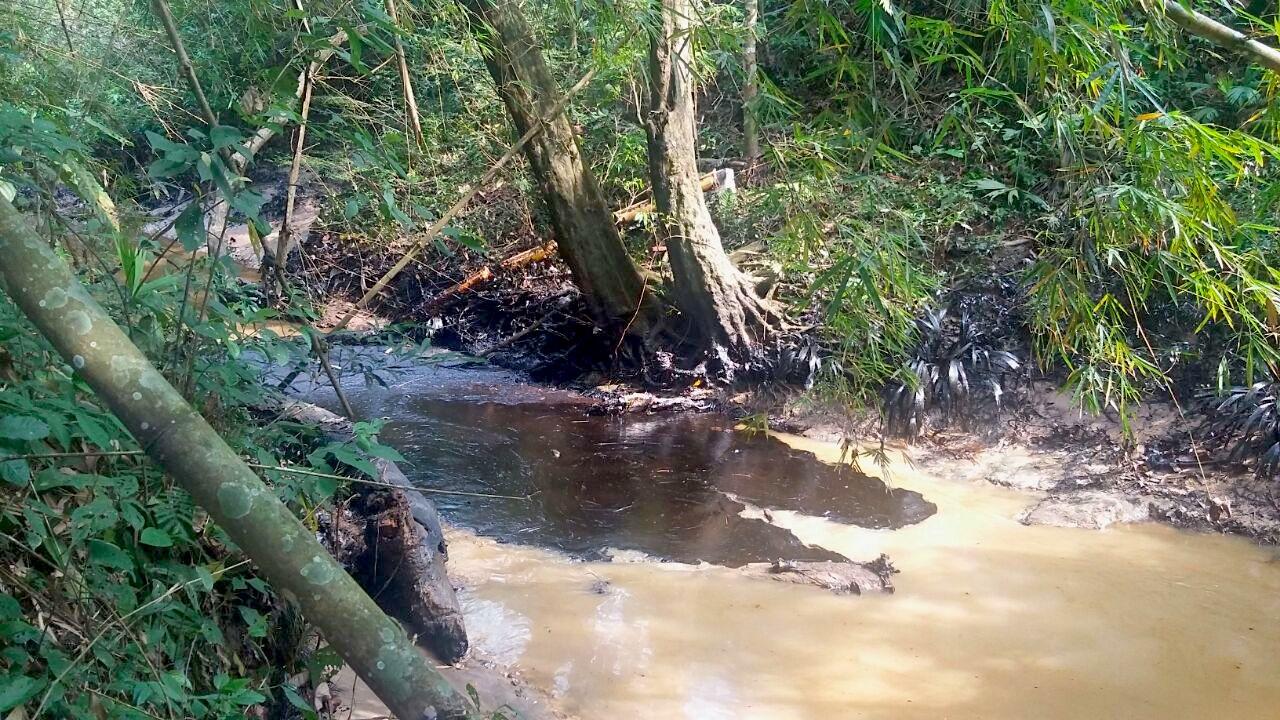 8 tipos de contaminaci n del agua