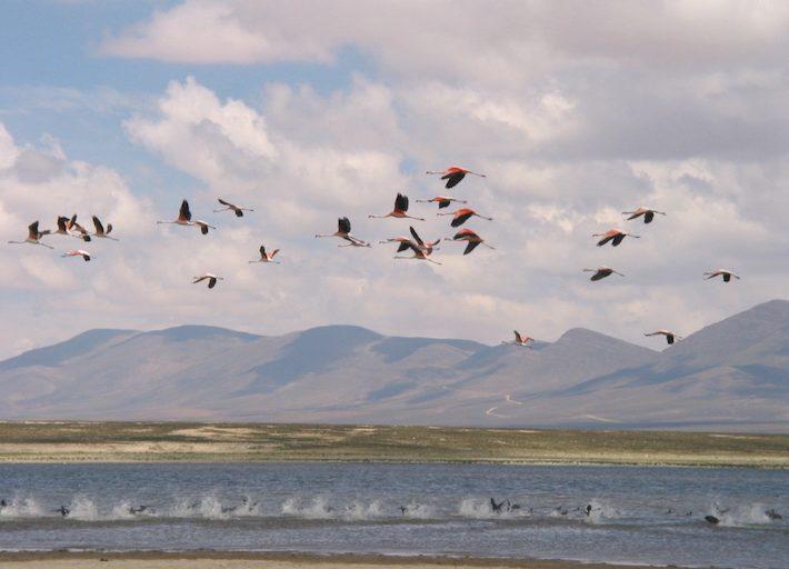 La cuenca de Tajzara. Foto: Sernap.