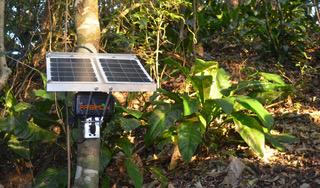 Junto con los grabadores de sonido se instalan paneles solares para proveer de energía. Foto: Marconi Campos / Sieve Analytics.