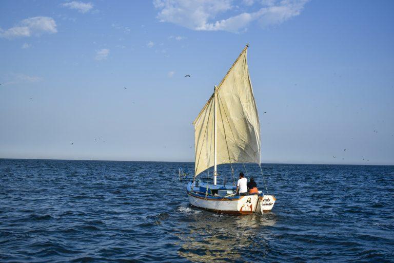 El Perú se ha comprometido a llegar al 10% de su espacio marino bajo una forma de protección. Foto: Oceana.