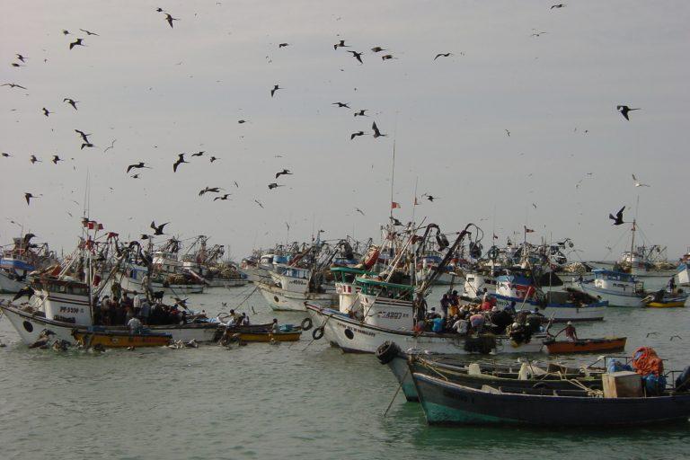 Actividades económicas como la pesca y el turismo resultarían afectadas por la explotación petrolera, según los expertos. Foto. Oceana