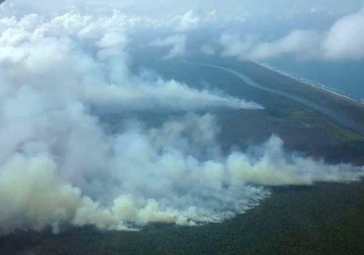 Vista aérea de los focos de incendio en la reserva. Foto: Fundación del Río.