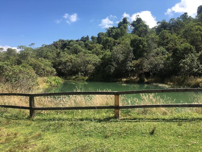 Lago artificial que ocupa el espacio donde antes operaba la mina de caliza. Foto: Eliana Garzón.
