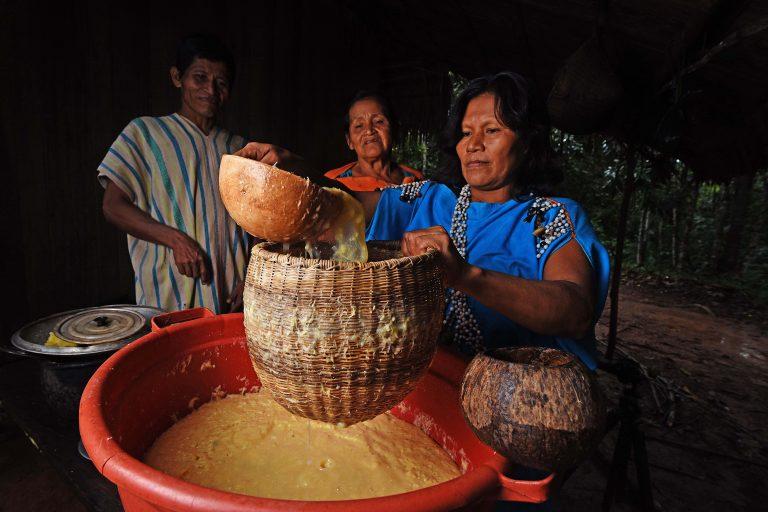 La Reserva Comunal El Sira tiene una extensión de más de 600 mil hectáreas y se extiende en los territorios de los departamentos de Ucayali, Huánuco y Pasco. Foto: Sernanp.