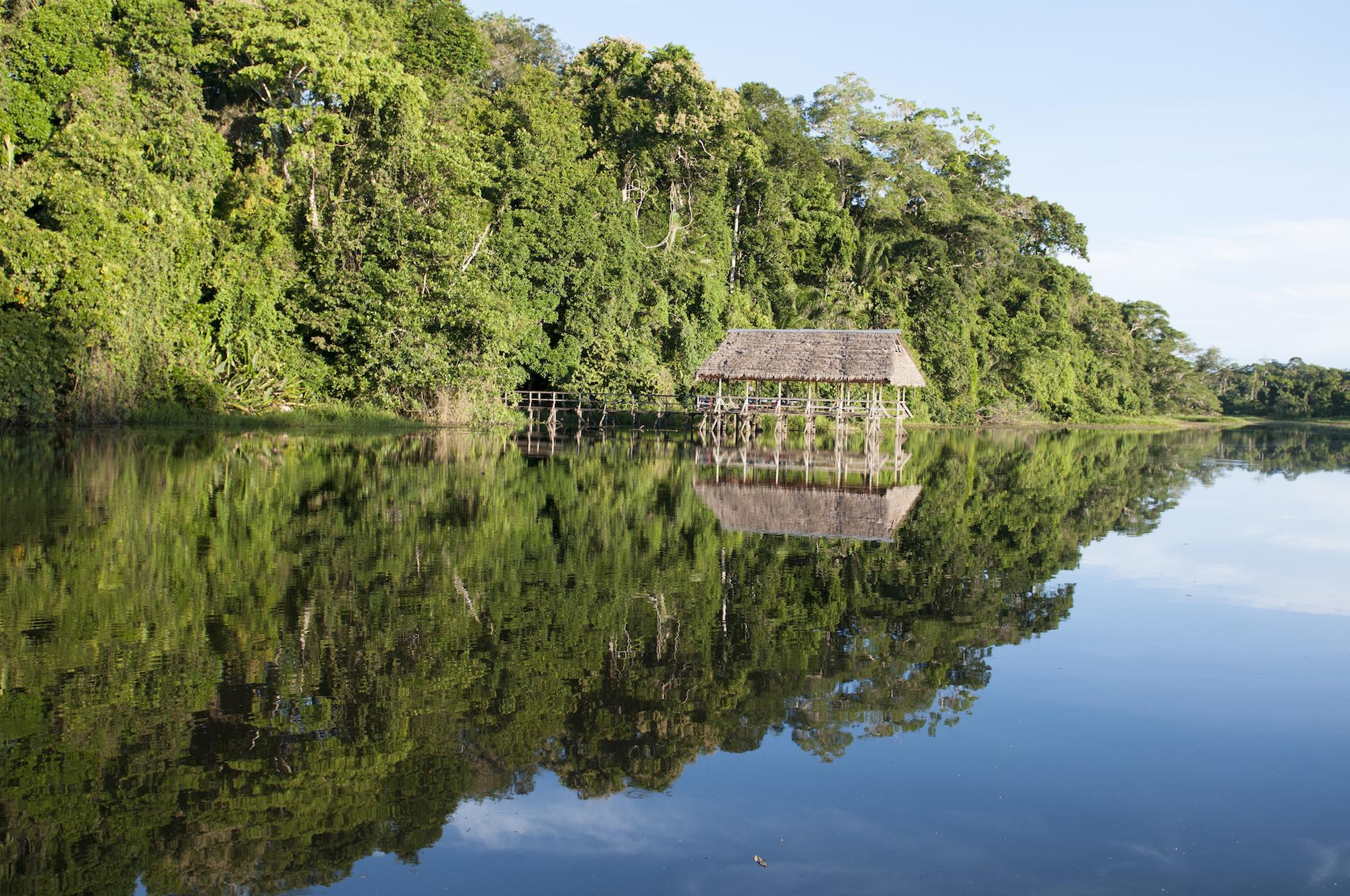La Reserva Comunal Amarakaeri está amenazada por el avance de la minería ilegal. Foto: Iñigo Maneiro.