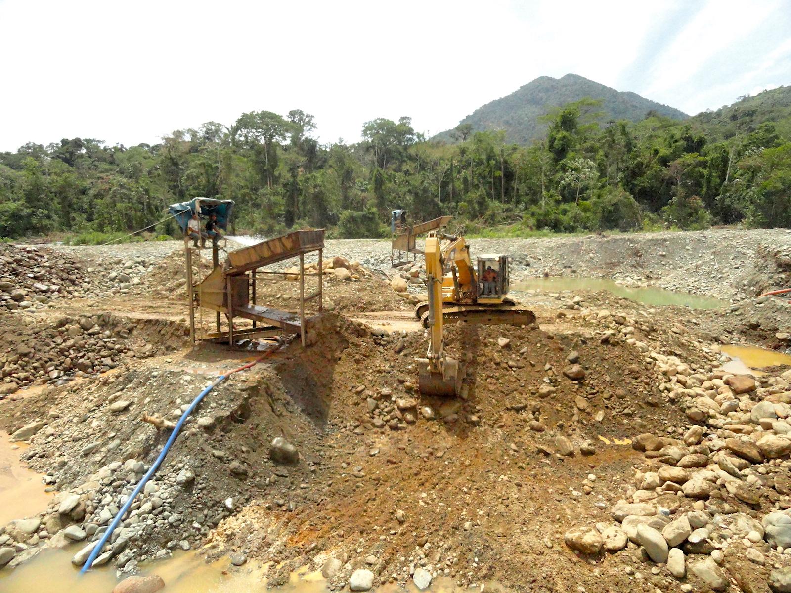 Camanti El Bosque Que Lucha Contra La Minería